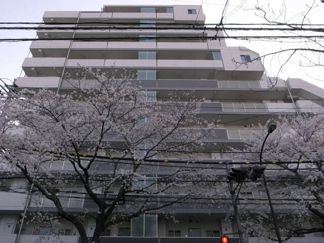 ベリスタ練馬江古田 9階 59.72㎡ (新江古田駅)