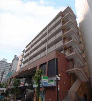ライオンズマンション石神井公園 9階 53.76㎡ (石神井公園駅)